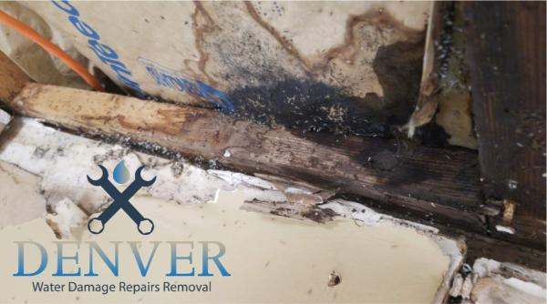 emergency water damage restoration company denver colorado 35