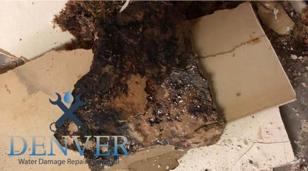emergency water damage restoration company denver colorado 37