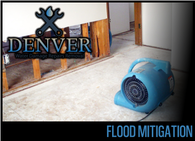 flood mitigation 2