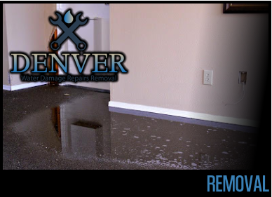 removal 2