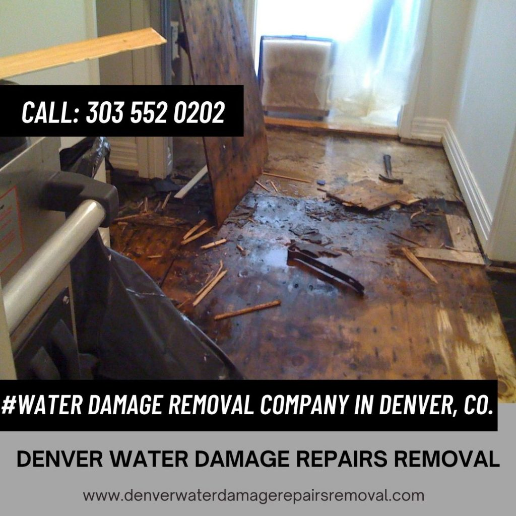 Water Damage Removal Company in Denver, CO.